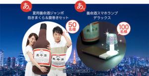 養命酒/ジャンボ抱き枕&腹巻きセット